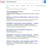 serp en google local