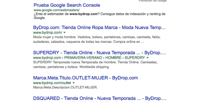 serp en google local