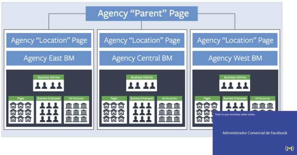Estructura Regional de Agencia en el Administrador Comercial de Facebook