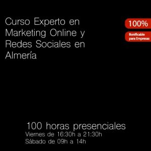 Curso Experto en Marketing Online y Redes Sociales